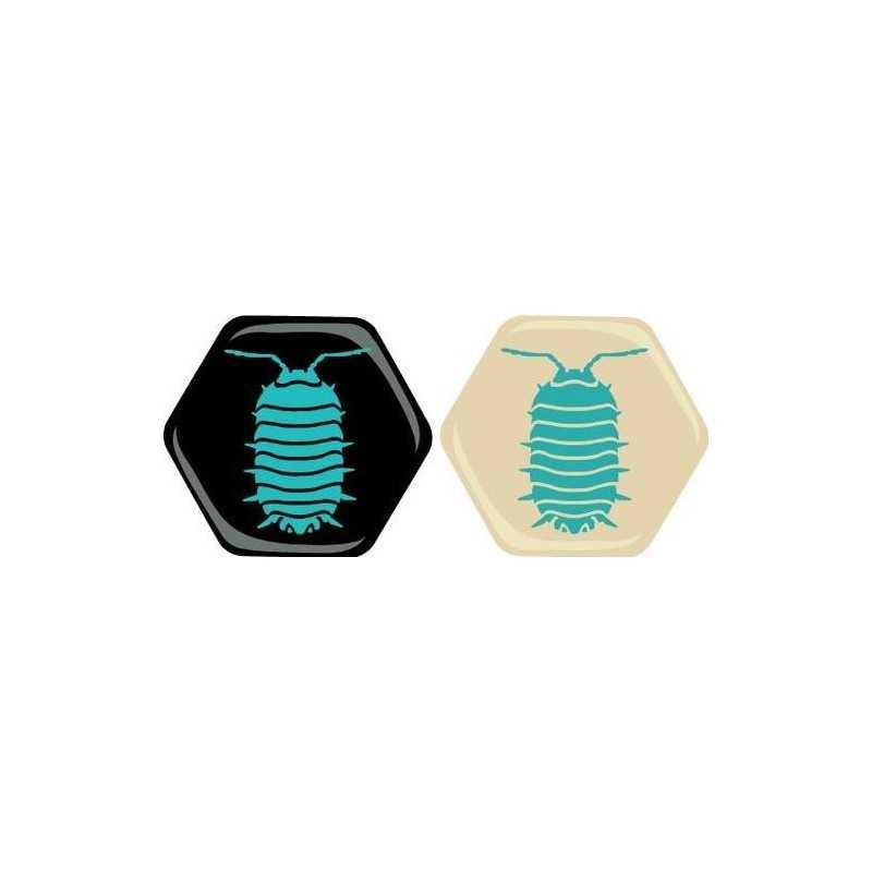 Hive: Bicho Bola