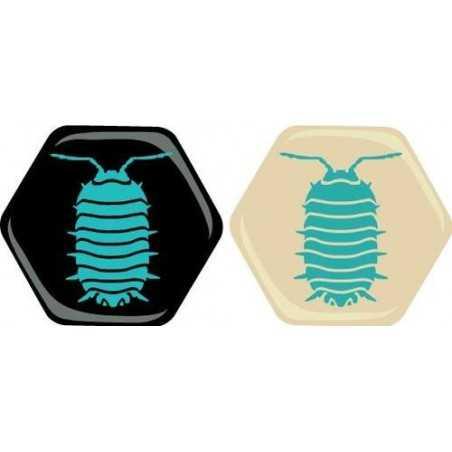 Hive: Pillbug