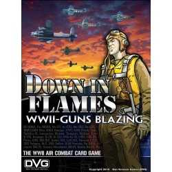 Down in Flames WWII Guns Blazing