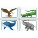 Concept Kids Animales